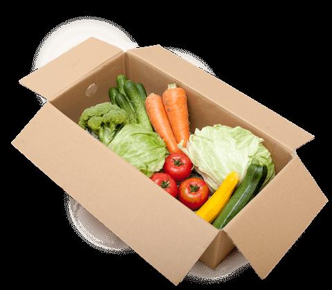 野菜宅配セットSセット
